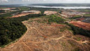 Defrisari masive in padurea amazoniana.