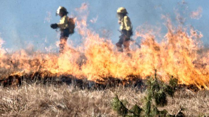 Incendiile din Siberia stabilesc noi recorduri